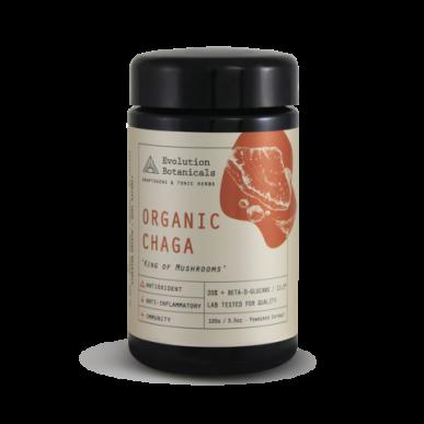Medicinal Mushroom Chaga