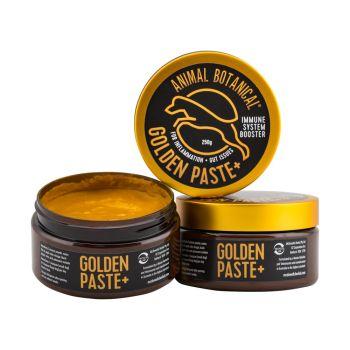 Golden Paste +