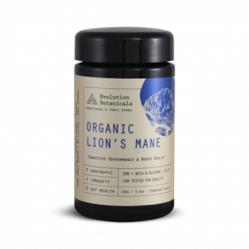 Medicinal Mushroom Lion's Mane