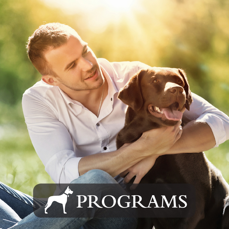 Dog Programs